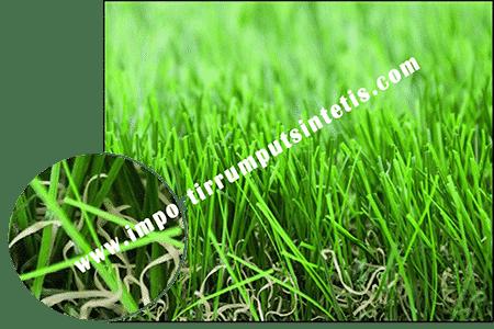 landscape-grass-c